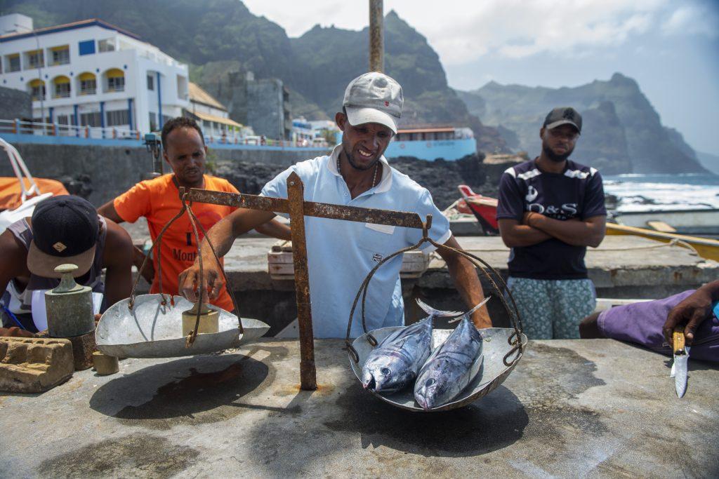Verse vis Kaapverdie